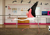 flamingo-model-at-jos-antonio-valverde-v
