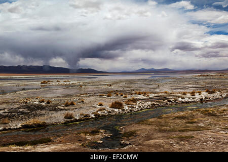 EF2CMW.jpg