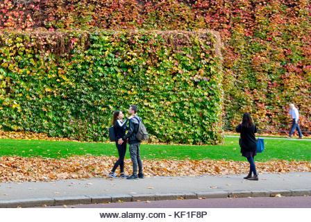 KF1F8P.jpg
