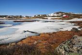 ice-lake-in-the-hardangervidda-d8h9c3.jp