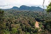 view-of-the-borneo-rainforest-sabah-mala