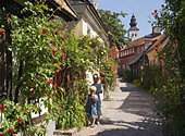 cobbled-lane-and-houses-visby-gotland-sw