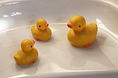 yellow-rubber-ducks-on-a-bath-byef7h.jpg