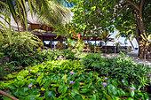 maitai-hotel-in-rangiroa-french-polynesi