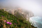 usa-california-highway-1-bixby-bridge-bg