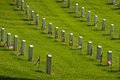 Rows of headstones with small flags on Memorial Day at Arlington National Cemetery. - Stock Image