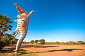 Australia road side attraction: Big Croc. Funny Jumping Crocodile sculpture at Adelaide River Queen Cruises near - Stock Image
