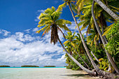 rangiroa-tuamotu-archipelago---french-po