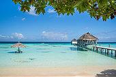 french-polynesia--fakarava-pearl-havaiki