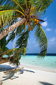maldives--beach-at-biyadhoo-island-by12n