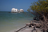 dome-houses-south-florida-gee0ew.jpg