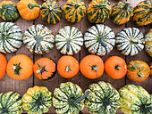 various-kinds-of-pumpkins-offered-at-mar