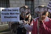 london-uk-25th-january-2014-protesters-w