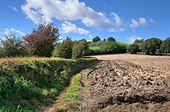 rural-england-showing-ploughed-field-hed