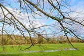 flooded-field-in-winter-in-arundel-west-
